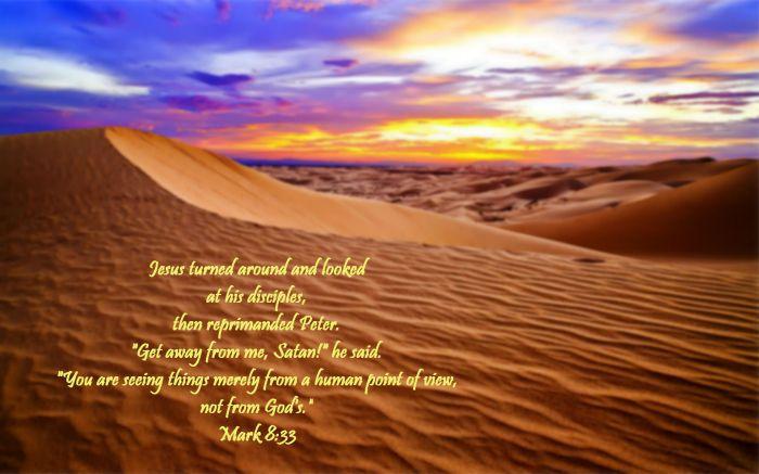 desertmark8